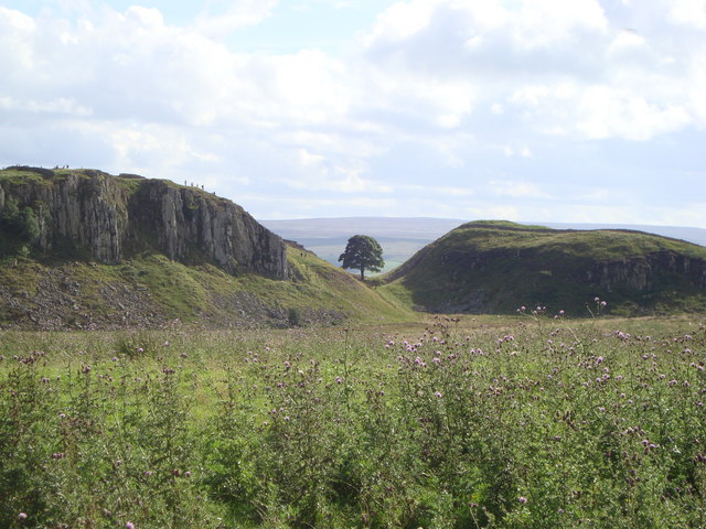 File:Looking Southwest towards Sycamore gap - geograph.org.uk - 1108508.jpg