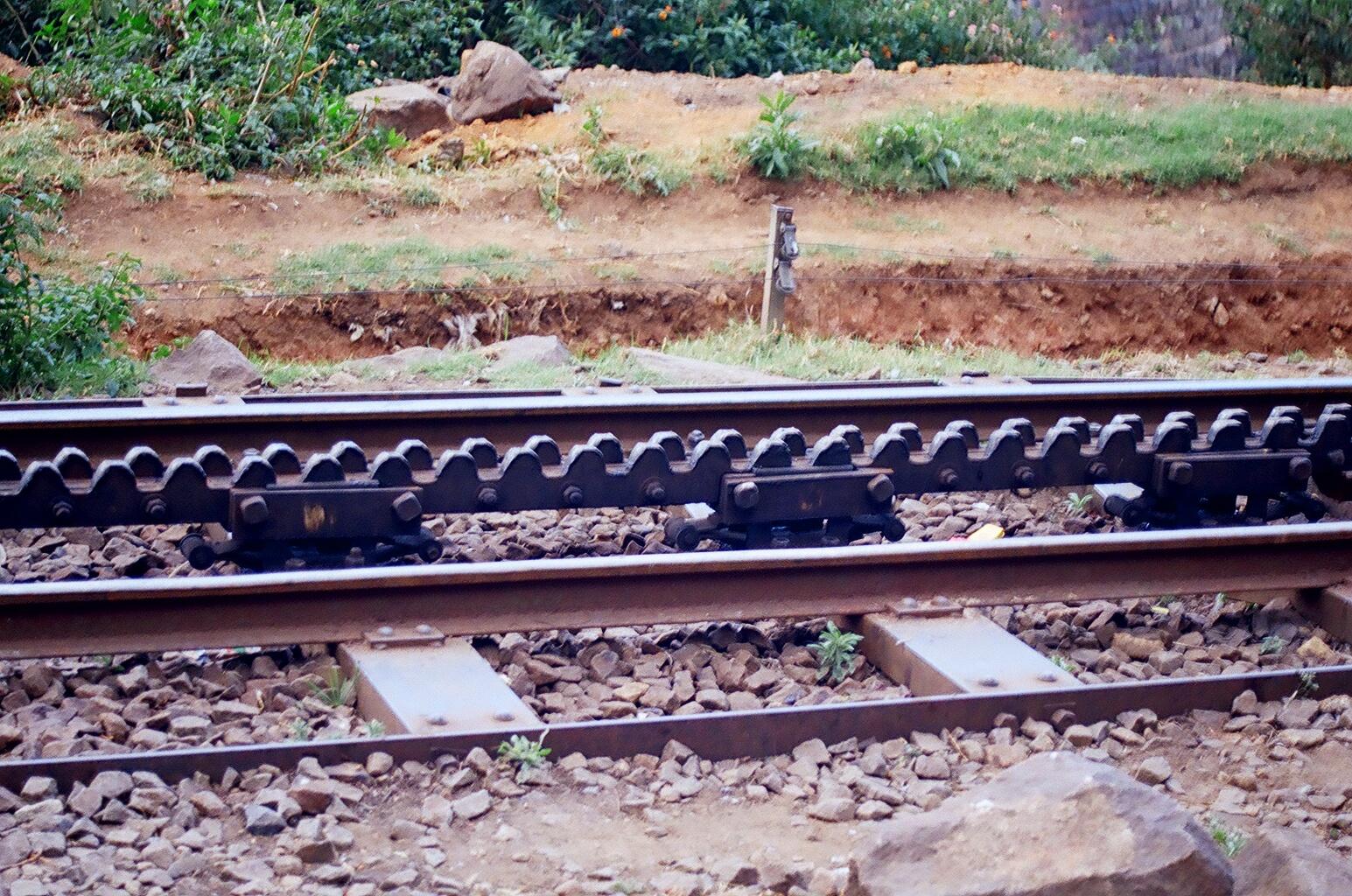Rack seen between the two tracks