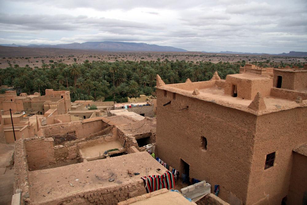 Nkib in morocco desert