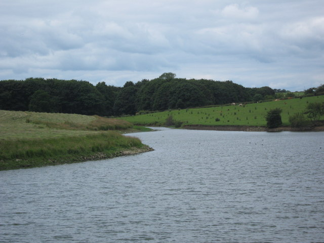 River inlet to reservoir - geograph.org.uk - 1392525