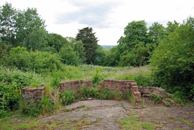 Ruined Hawthorn in Dunton Plotlands - geograph.org.uk - 1375134