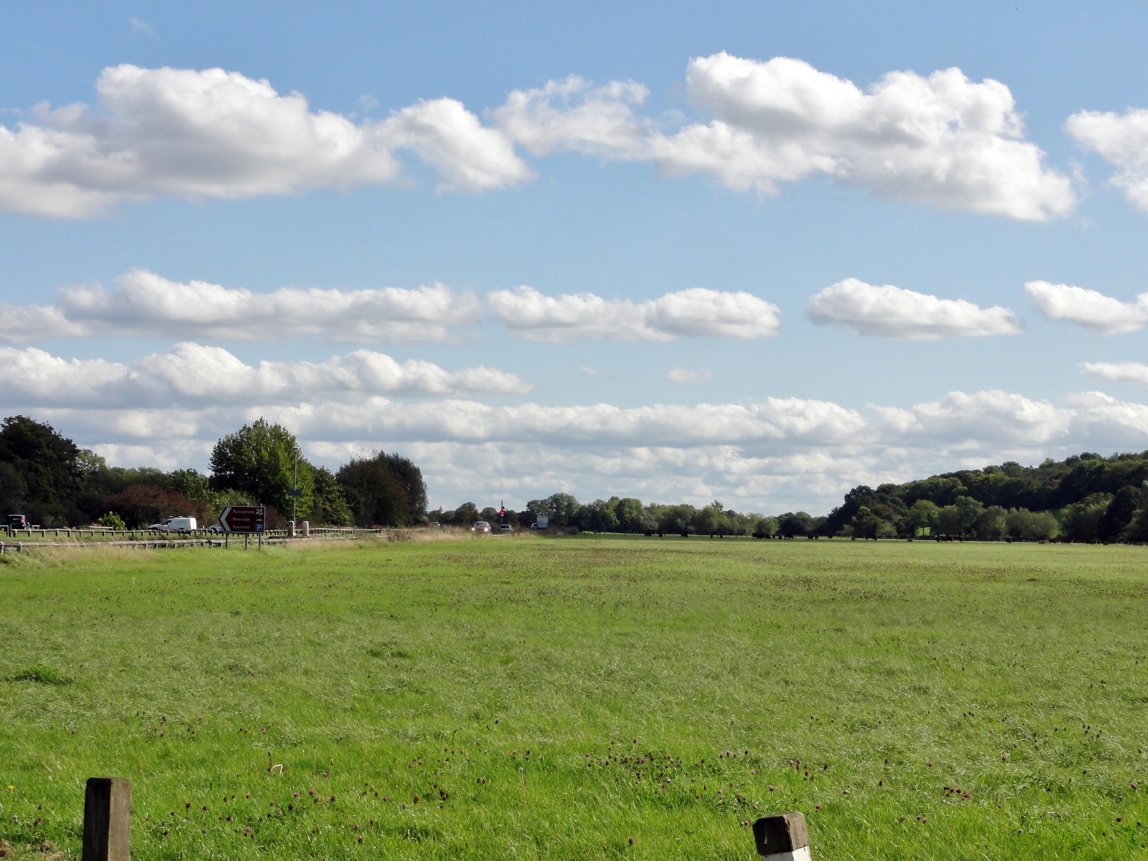 Runnymede Meadows: En esta pradera fue donde se firmó en 1215 la Carta Magna. Por eso al principio se llamó Carta de Runnymede.