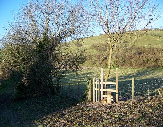Stile with dog gate, Gypsy Lane - geograph.org.uk - 744670