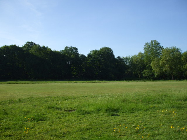 Tooting Bec Common - geograph.org.uk - 1316332