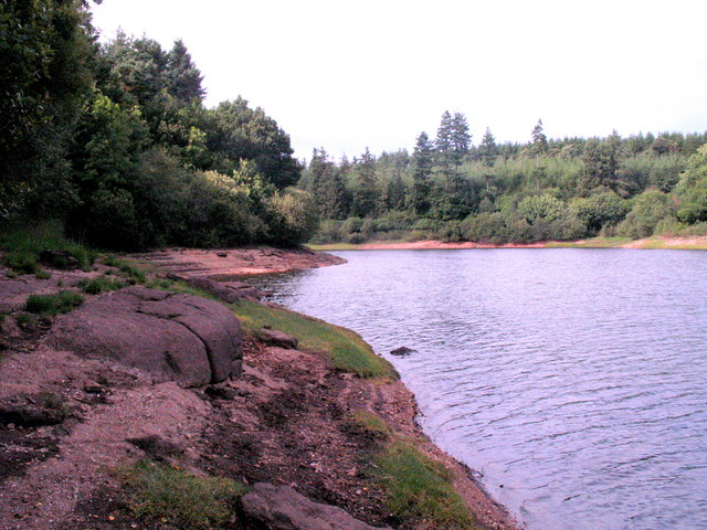 Trenchford Reservoir Shoreline - geograph.org.uk - 1472790