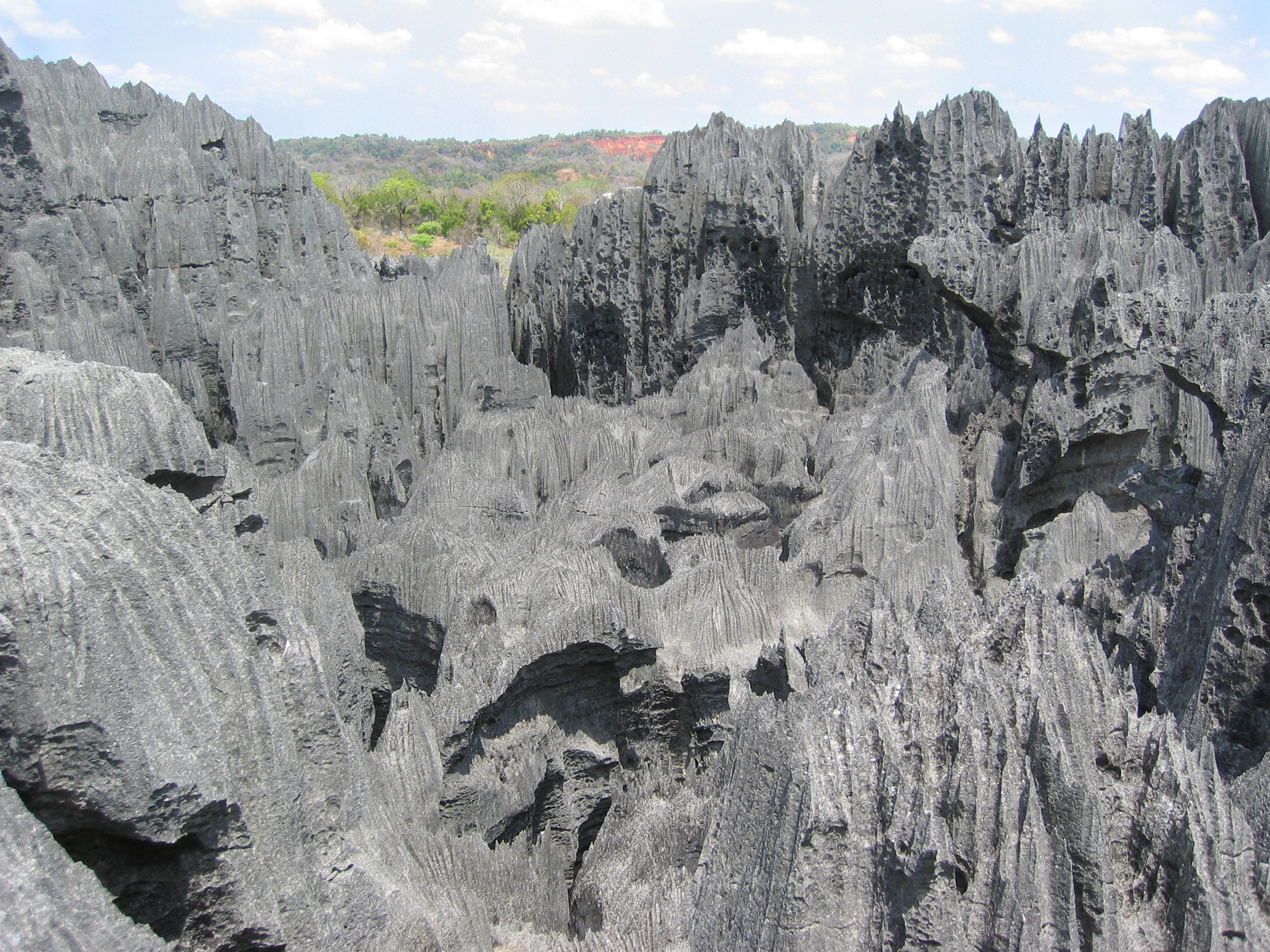 [Image: Tsingy_de_Bemaraha_Strict_Nature_Reserve.jpg]
