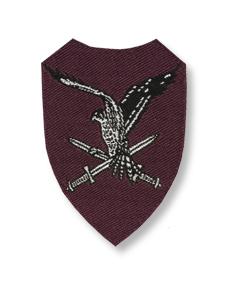 Tweede mouwembleem luchtmobiele brigade.jpg