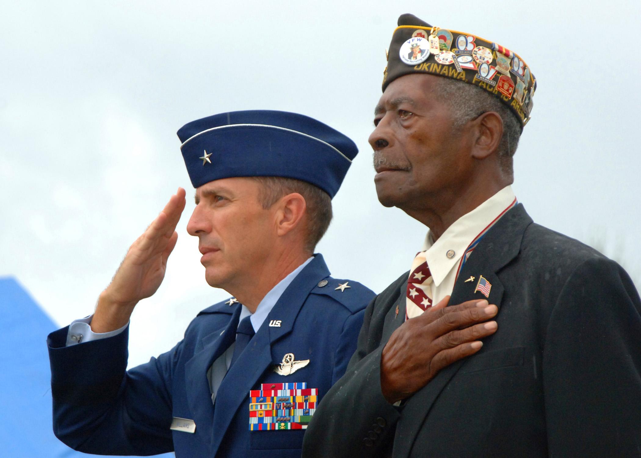 Image Result For Veterans Day Flag