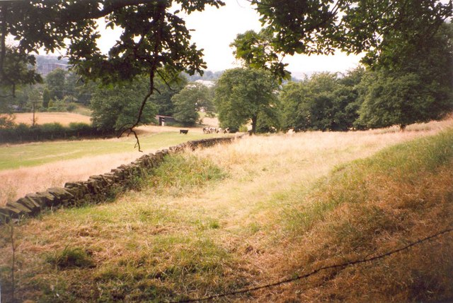 View from Hagg Wood, Hopton - geograph.org.uk - 725907