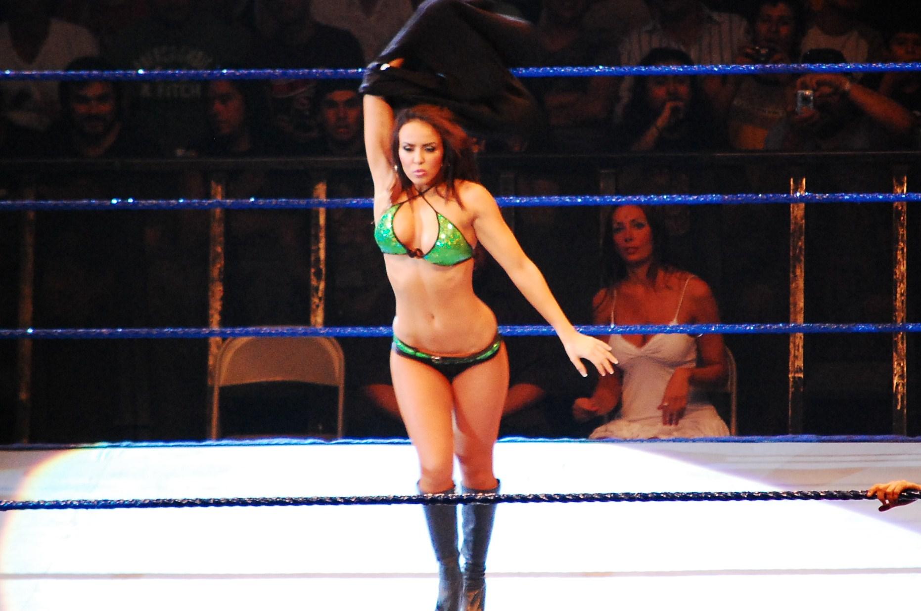 Description WWE Diva Layla.jpg