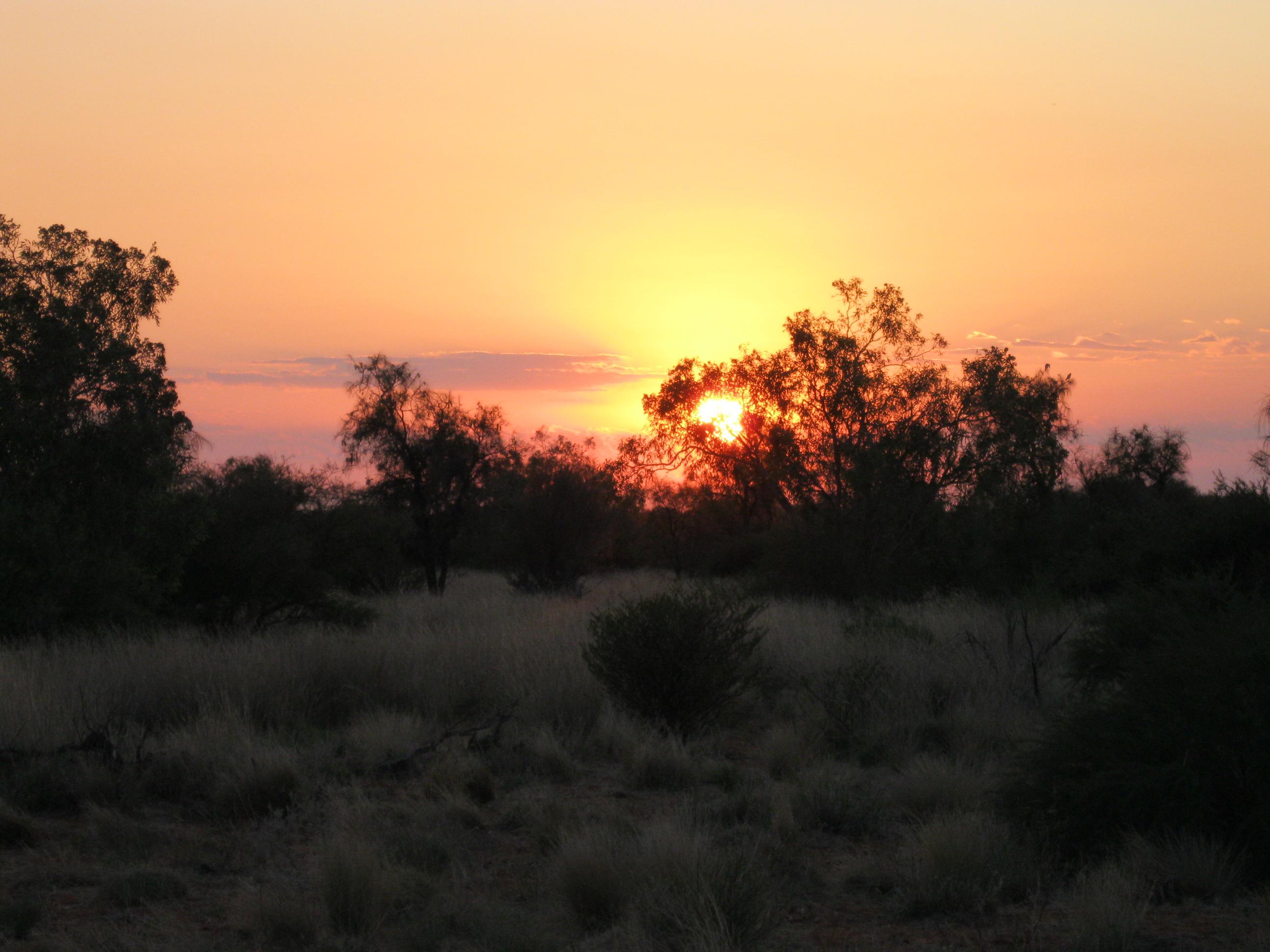 English: Sunrise at Windorah, Queensland, Aust...