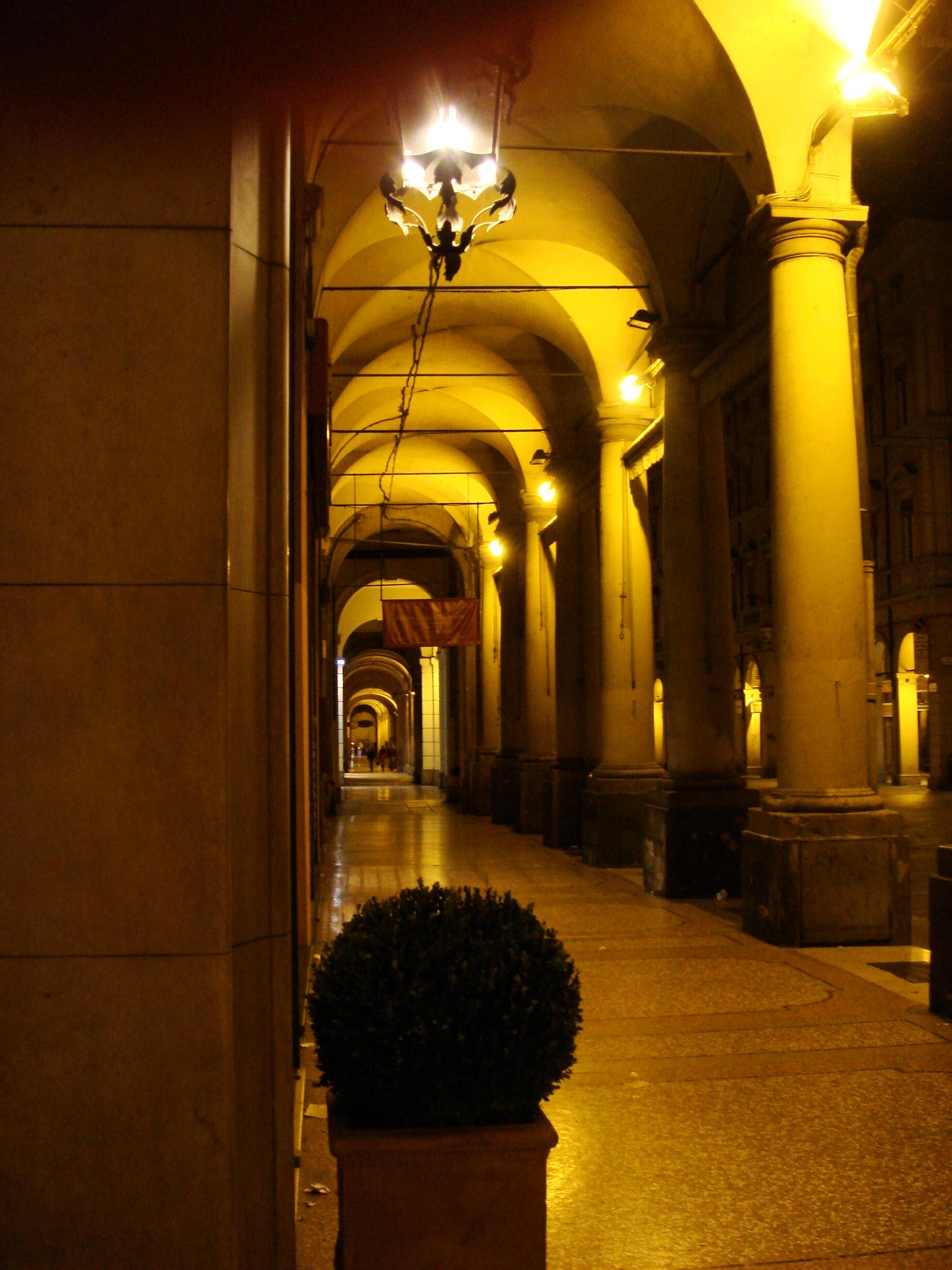 file 0079 - bologna - portici di notte