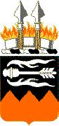 141 Signal Battalion COA