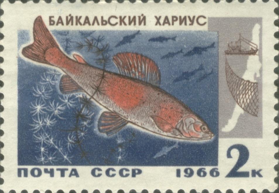 1966 CPA 3399.jpg