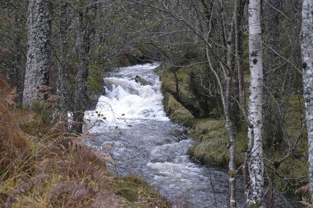 Aalt na Bodachan above Plodda falls - geograph.org.uk - 1032496