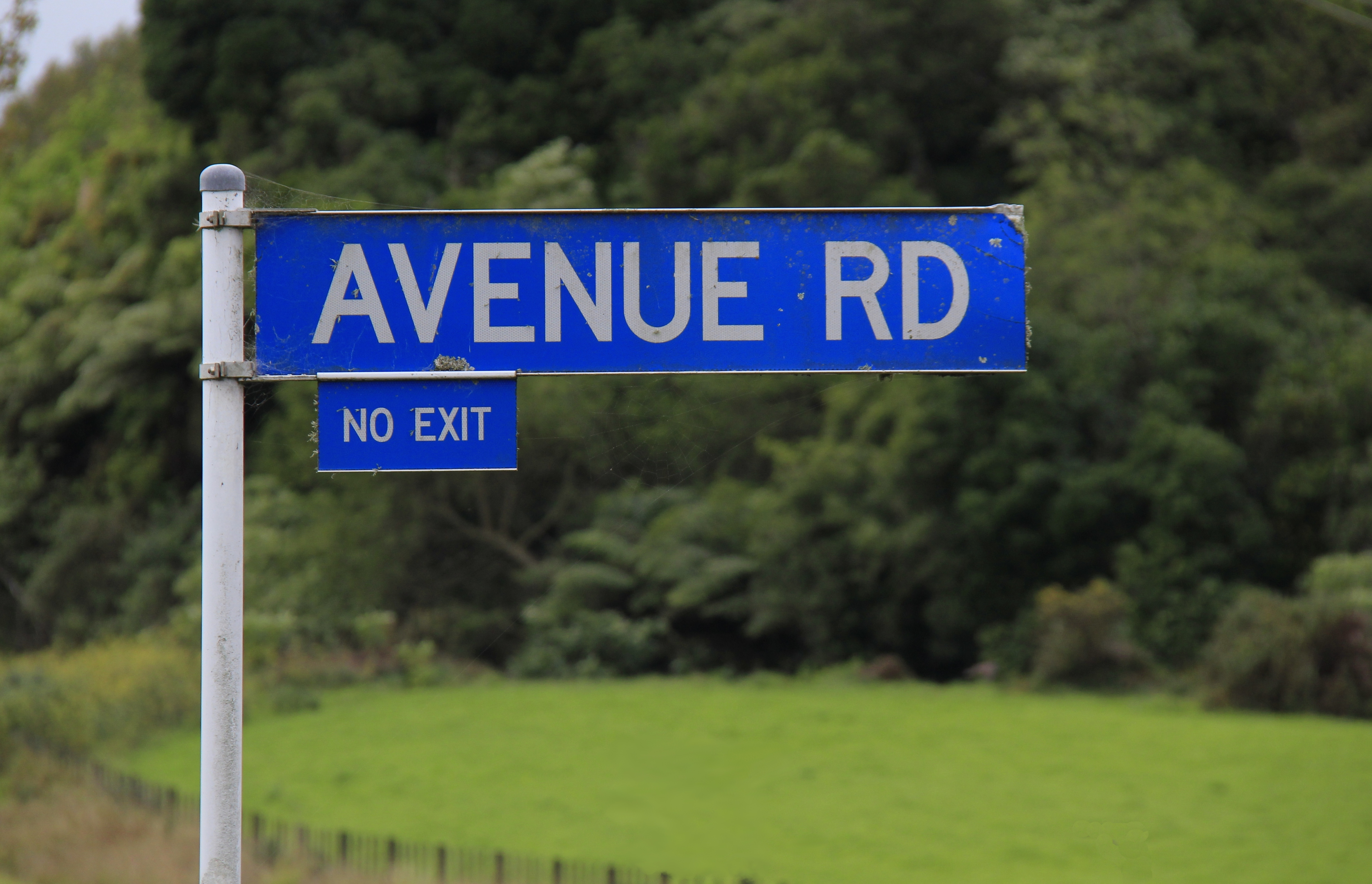 Fileavenue Road Street Sign, In Taranakig  Wikimedia. Stocks Trading Platform Employment Job Boards. Masters In Industrial Psychology. Photography Classes For Teens. Babysitting Agency London Home Security Blog