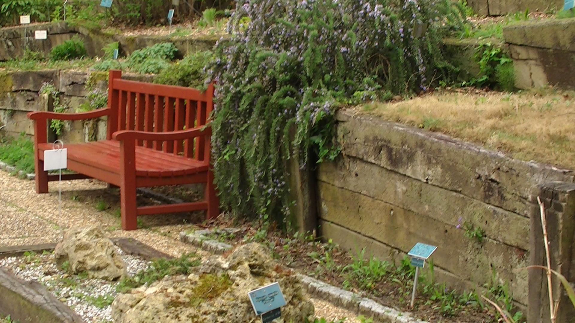 File Banc Jardin botanique Bayonne JPG Wikimedia mons