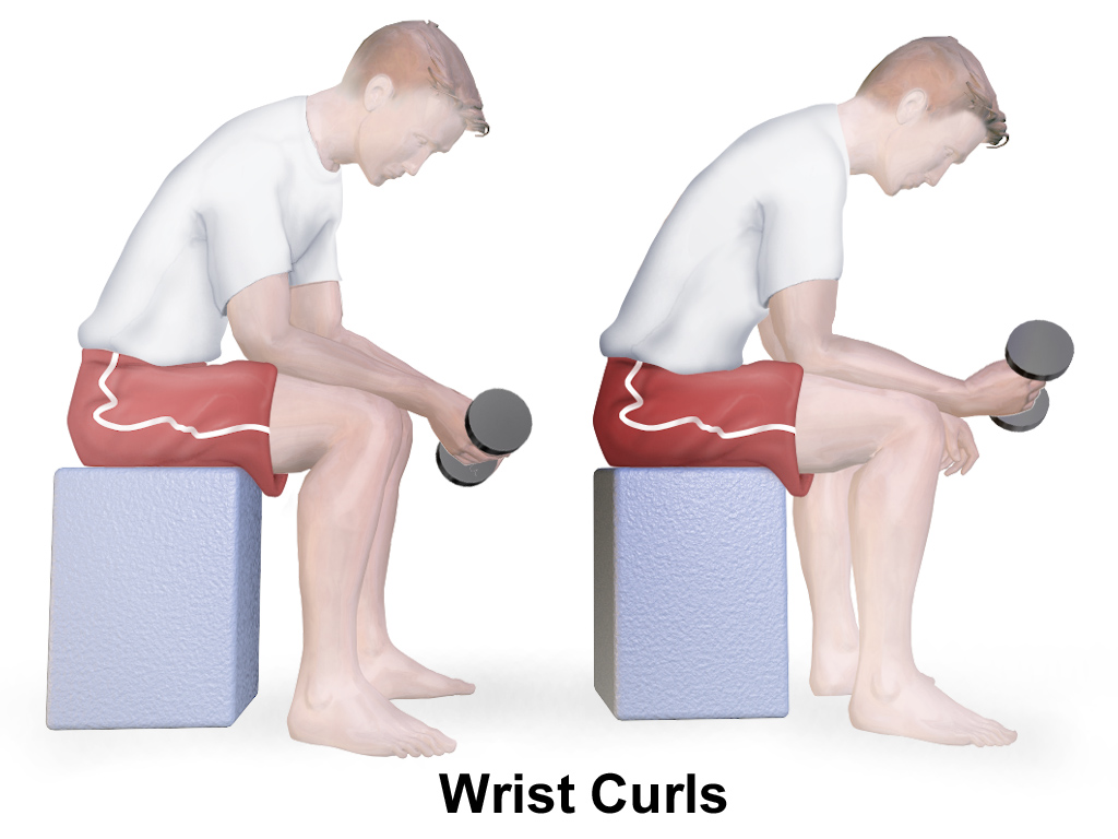 Wrist curl