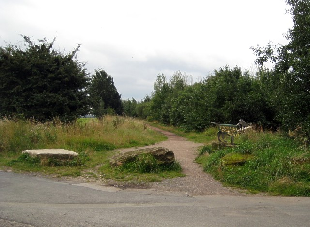 Fitzwilliam Country Park - geograph.org.uk - 939466
