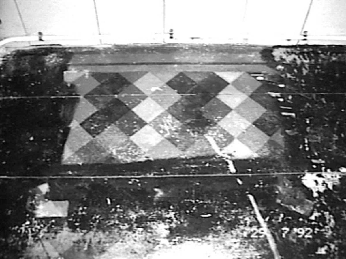 File:geschilderde houten vloer tegelmotief kleur zeggelis