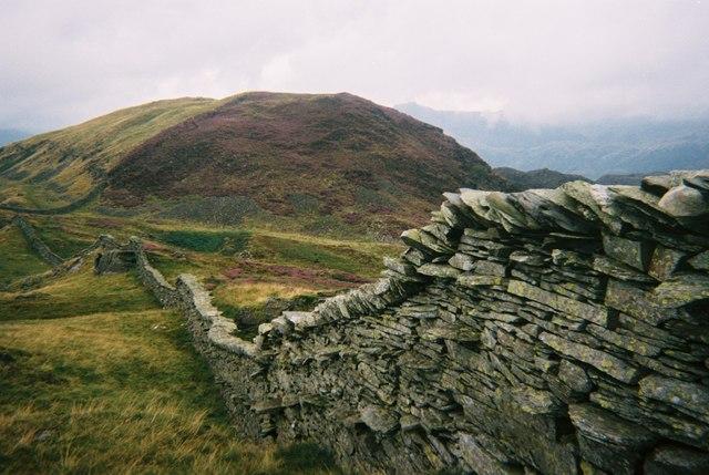 Lingmoor Fell - geograph.org.uk - 1519330