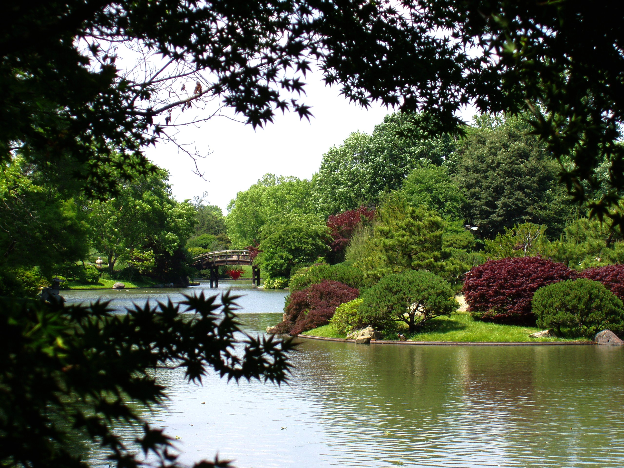 FileMissouri Botanical Garden Seiwa enJPG Wikimedia mons