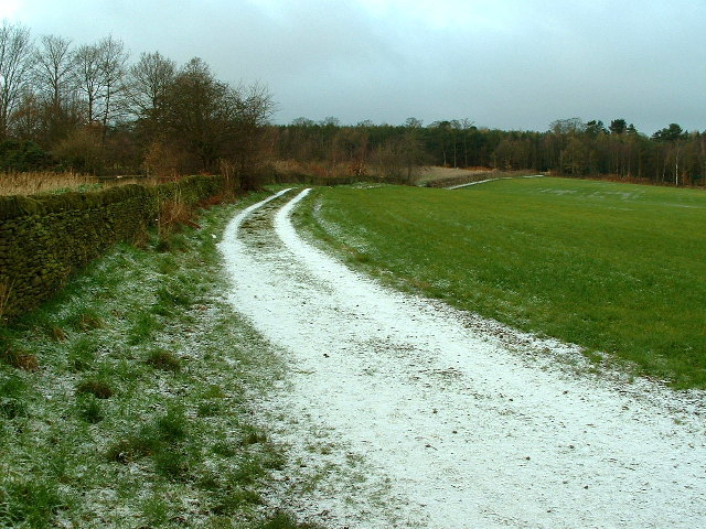 Path to Deffer Wood - geograph.org.uk - 95967