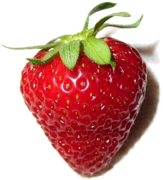 Can I give my dog strawberries?
