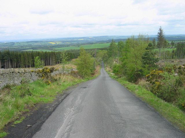 Road through Slaley Forest - geograph.org.uk - 171399