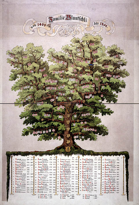 Arbre généalogique de la famille Bluntschli