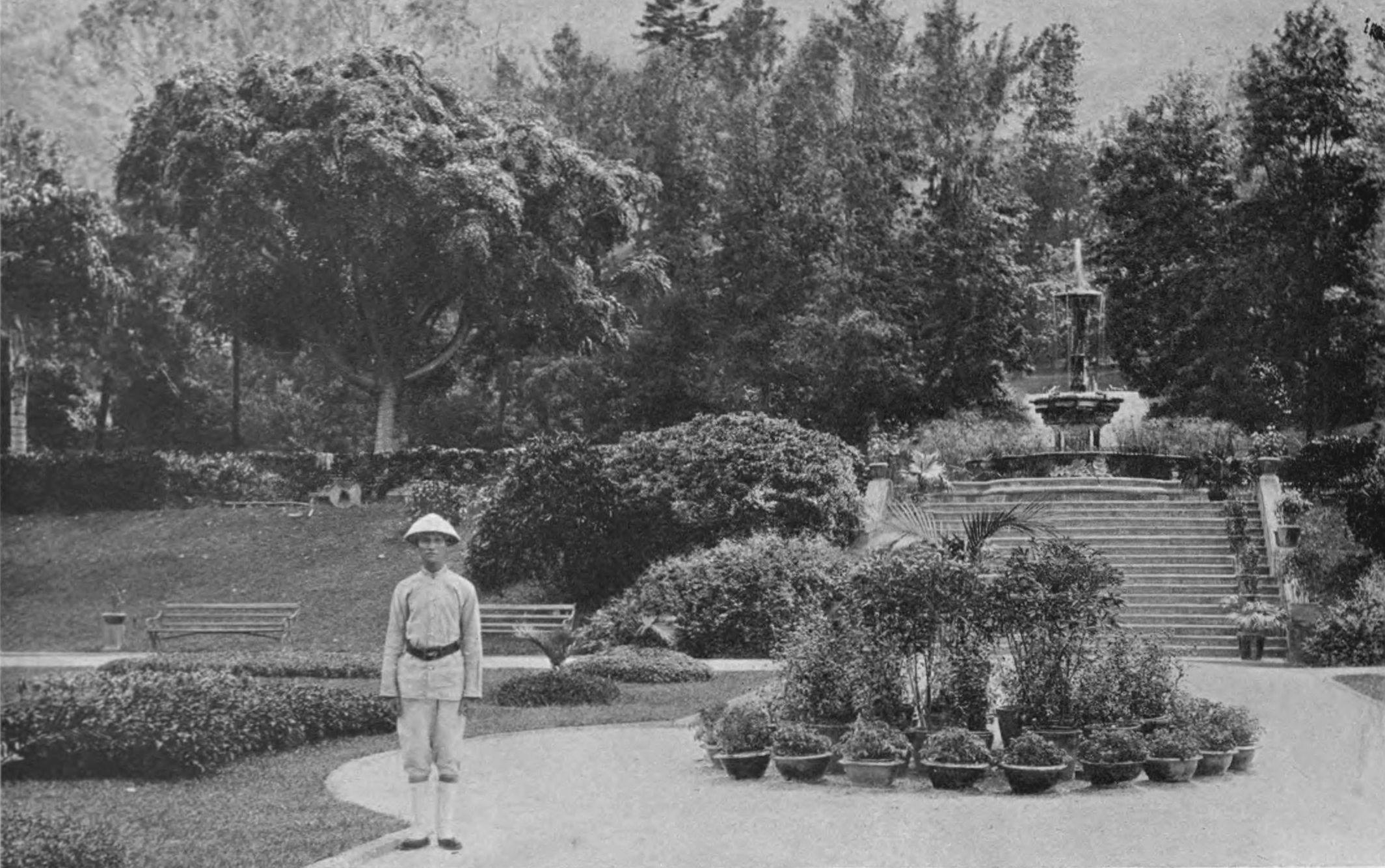 Tcitp d144 the public gardens of hong kong.jpg