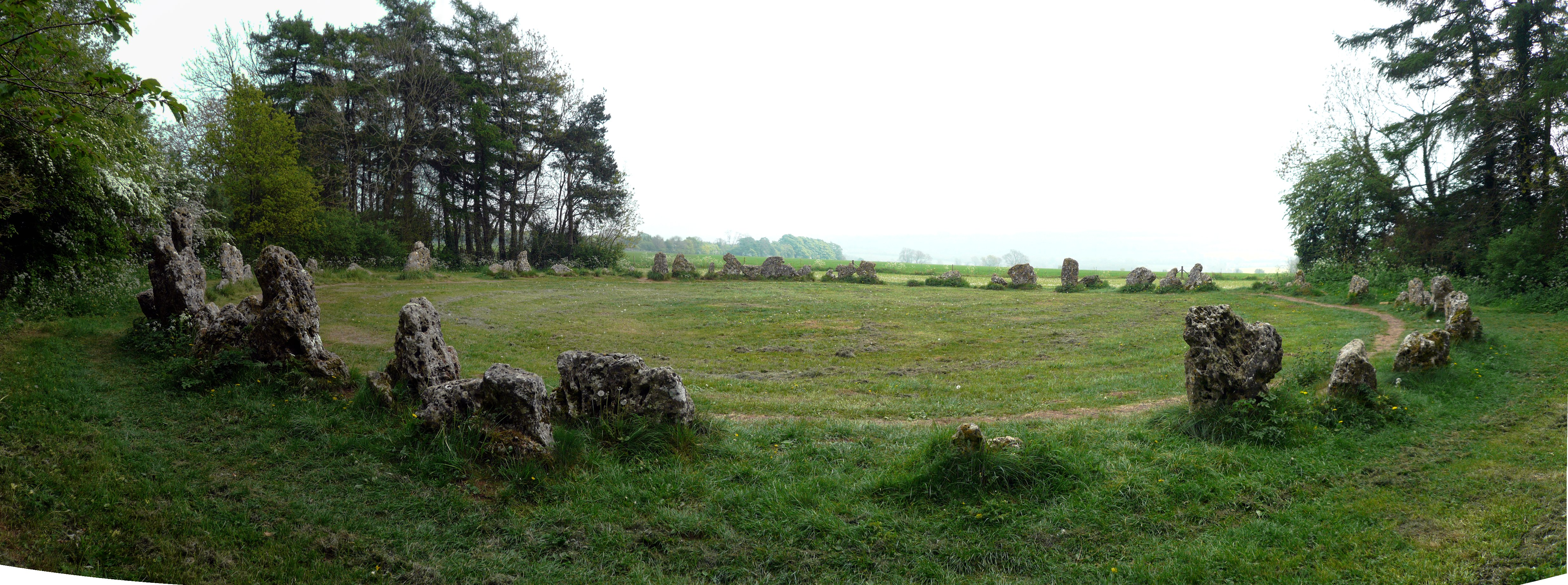 An image of the Rollright Stones, surrounded by trees.