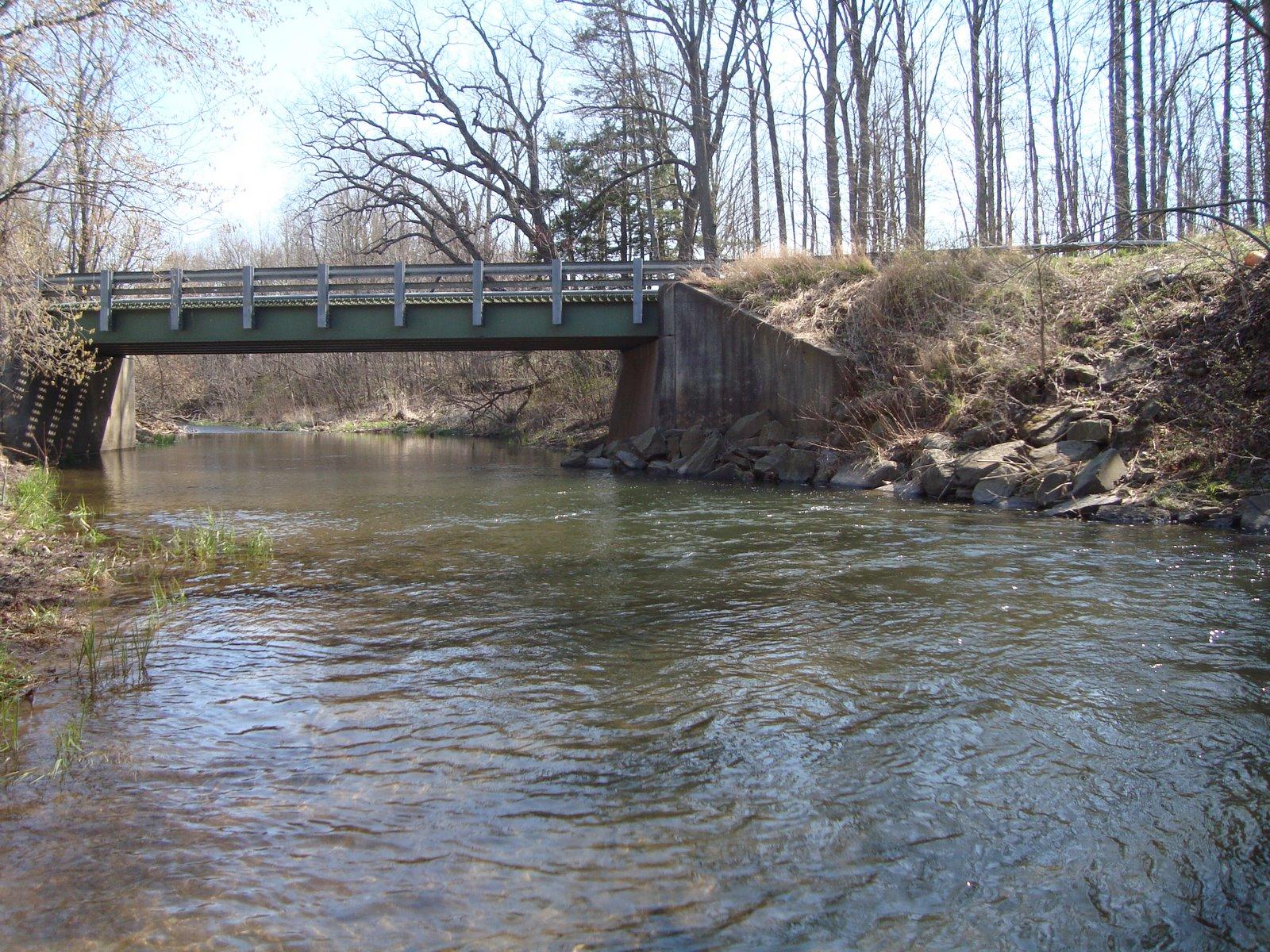 Flat waters lick creek chesapeakes