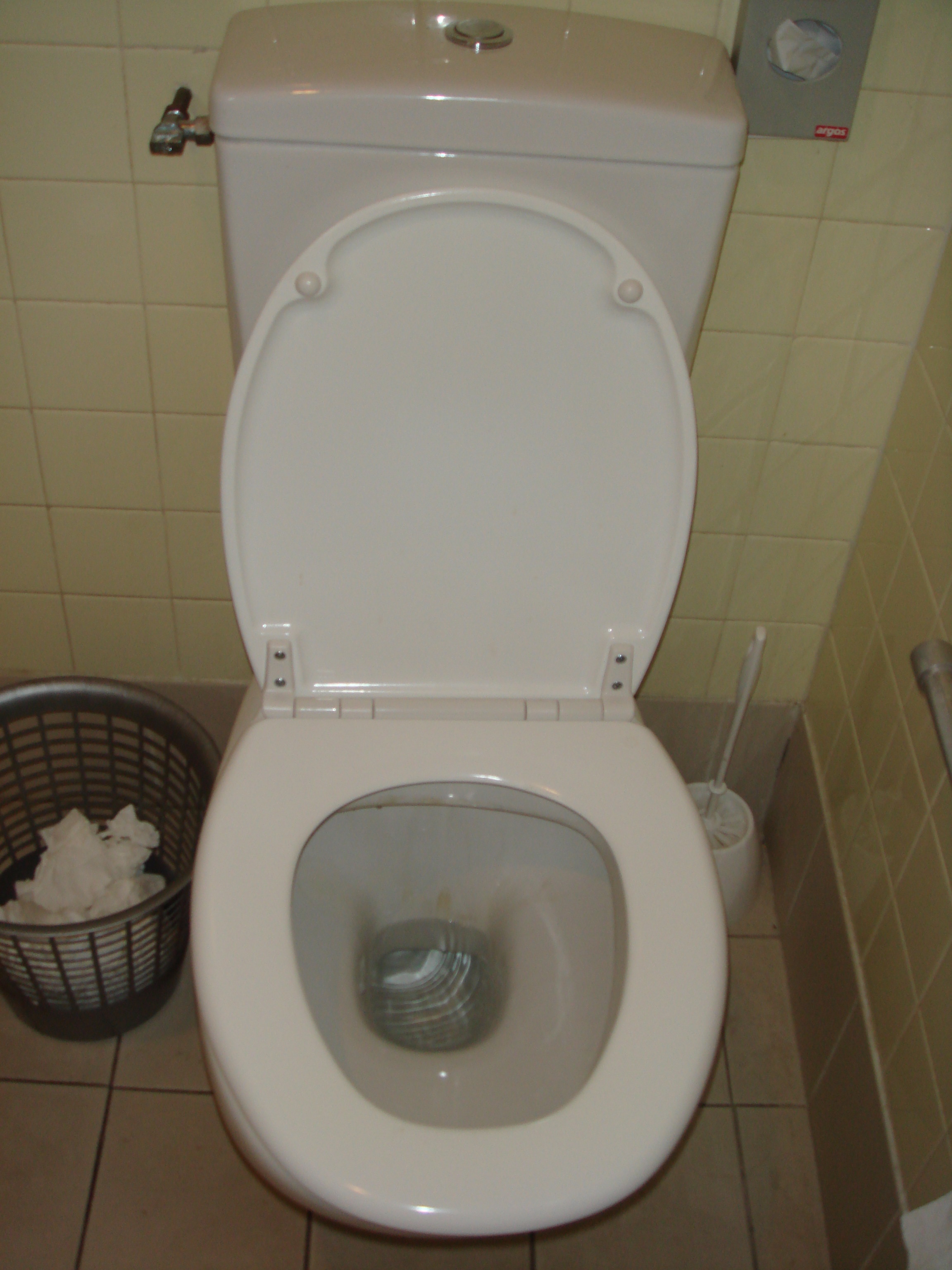 Toilettes — Wikipédia