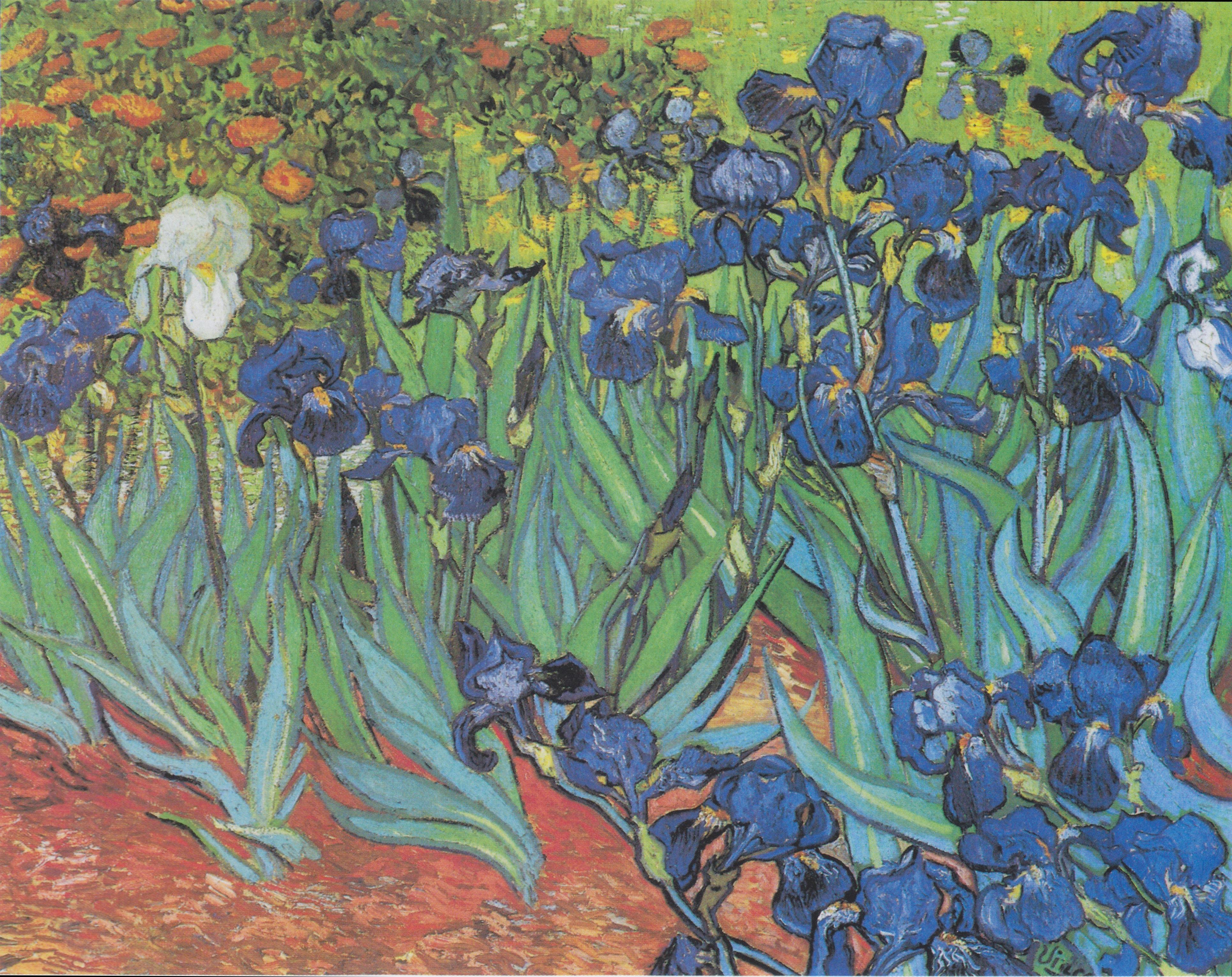 Van Gogh Flower Paintings Coloring Page