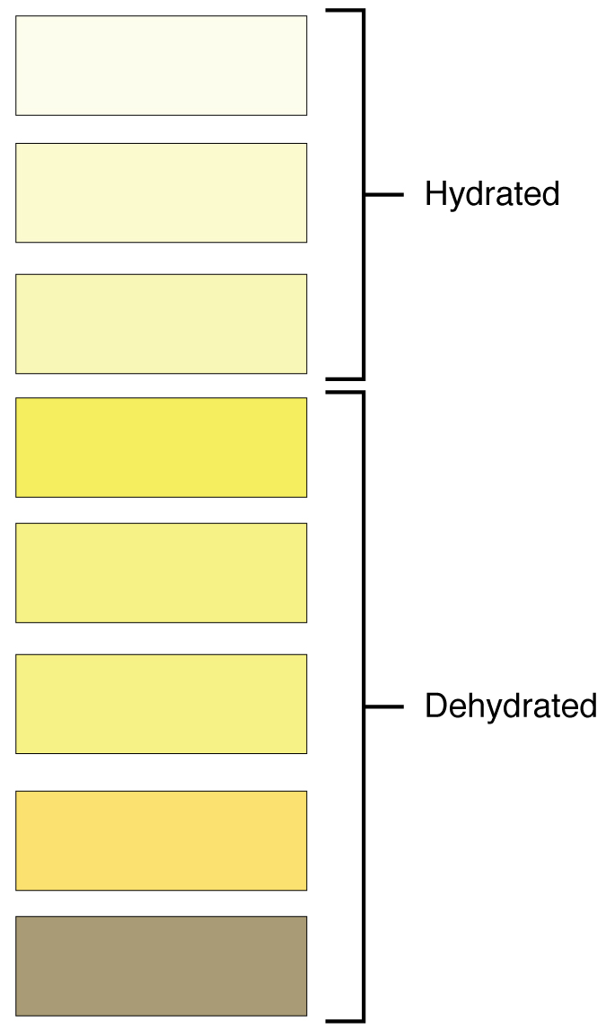 Sharpie Color Chart: 2601 Urine Color Chart.jpg - Wikimedia Commons,Chart