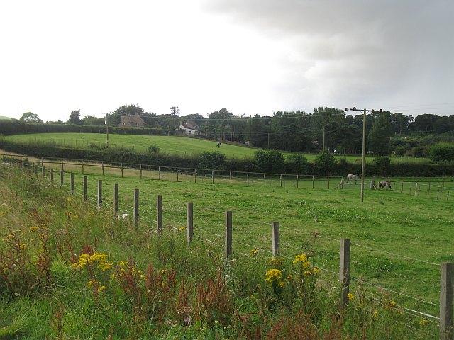 Approaching Guardbridge - geograph.org.uk - 1442071