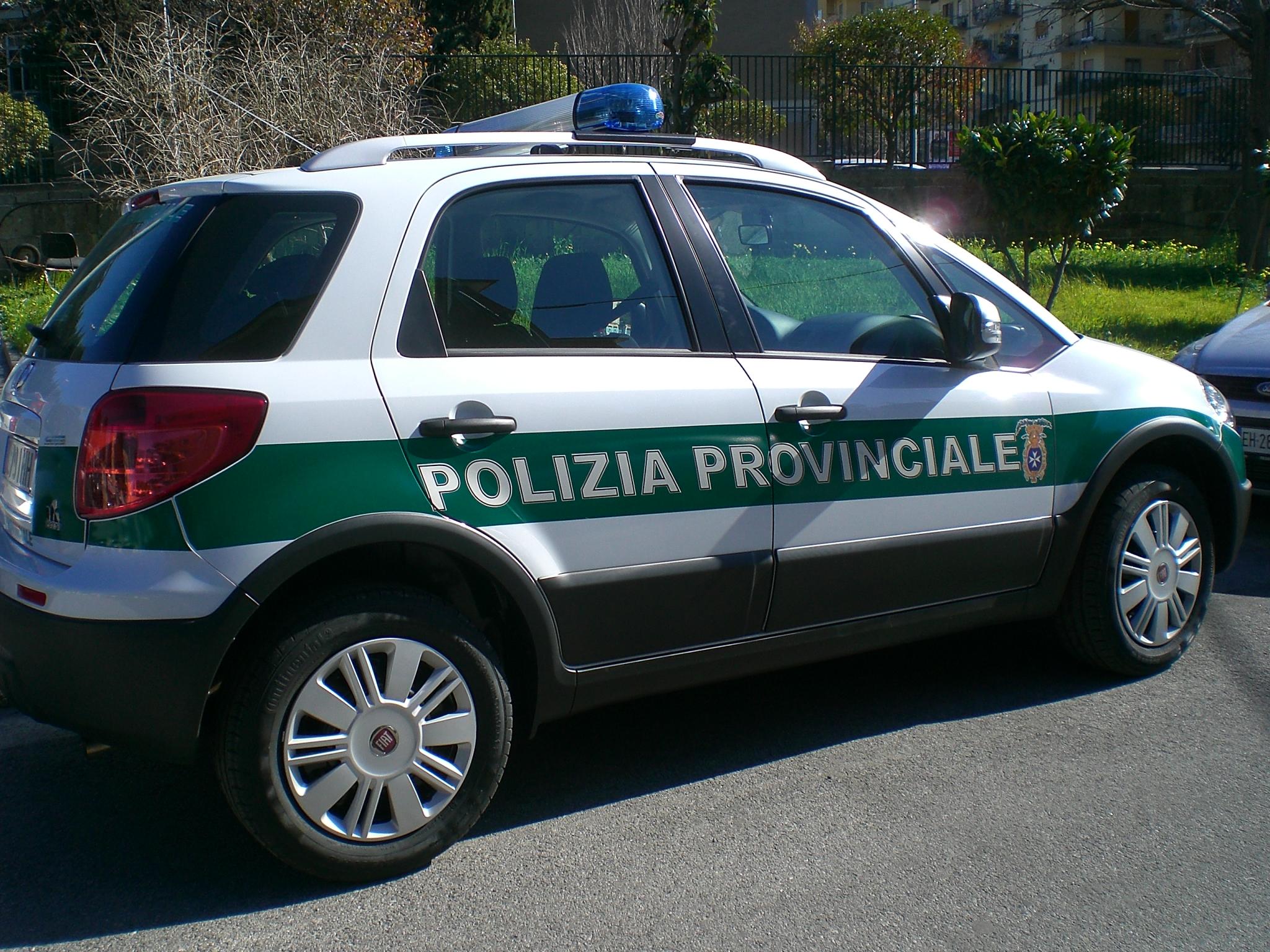 Provinciale Prophecy  Auto_polizia_provinciale