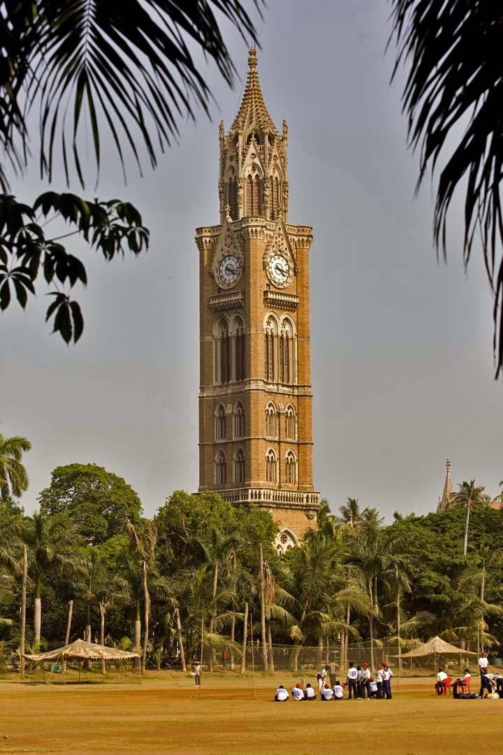 A clock tower amid trees and a playground
