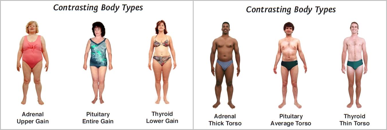 Dating body type