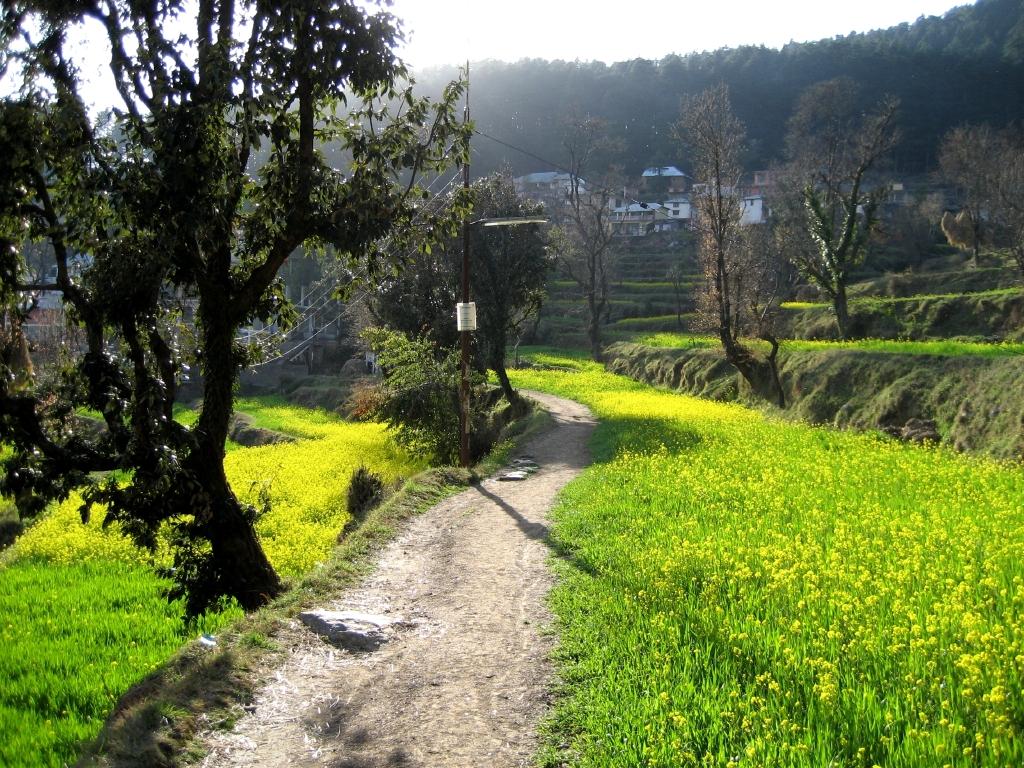 Dharamkot, Himachal Pradesh - Wikipedia
