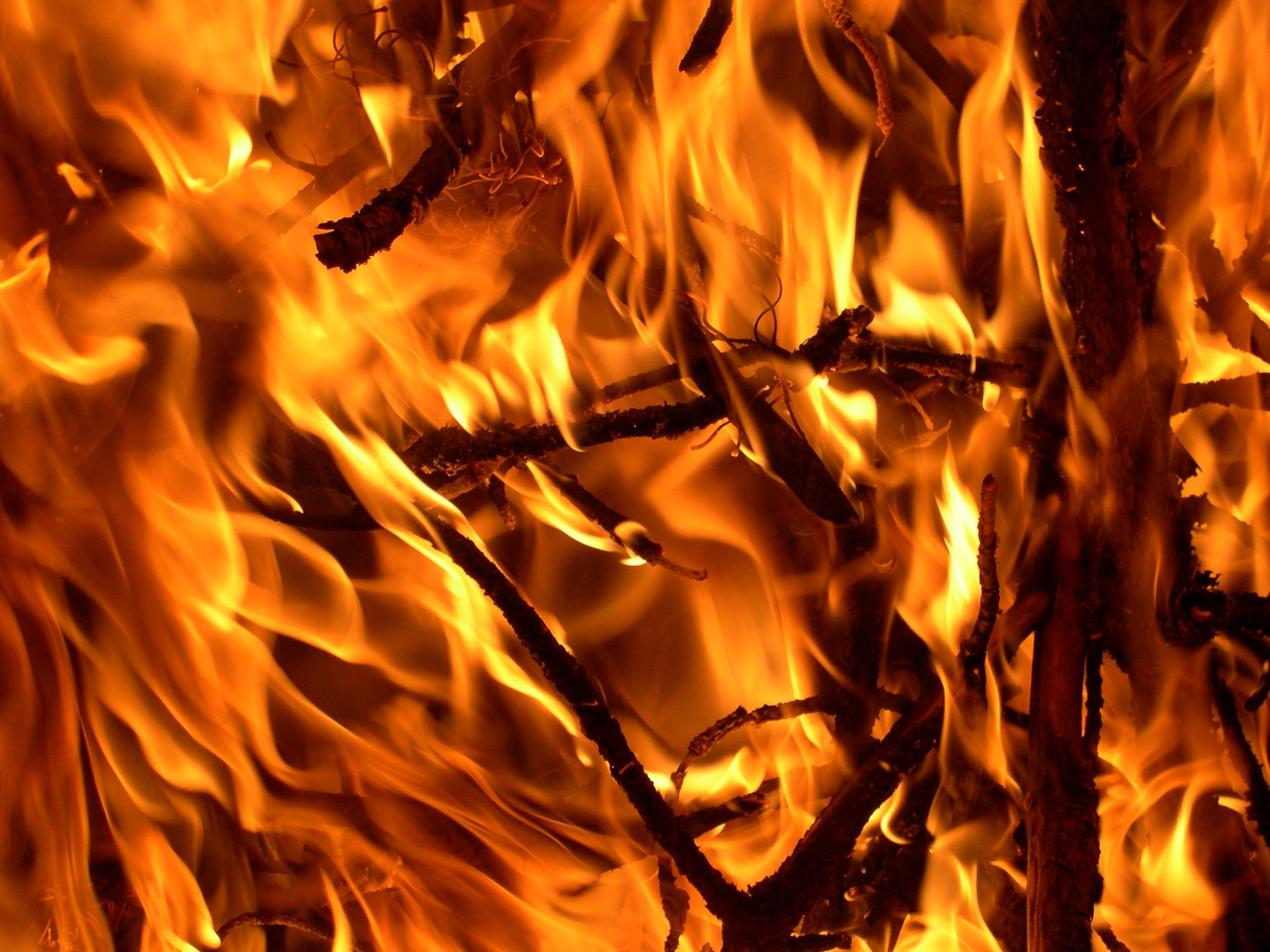 Resultado de imagem para fire