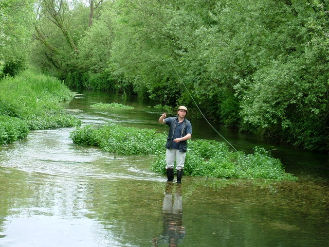 Fishing on the River Lambourn - geograph.org.uk - 158818