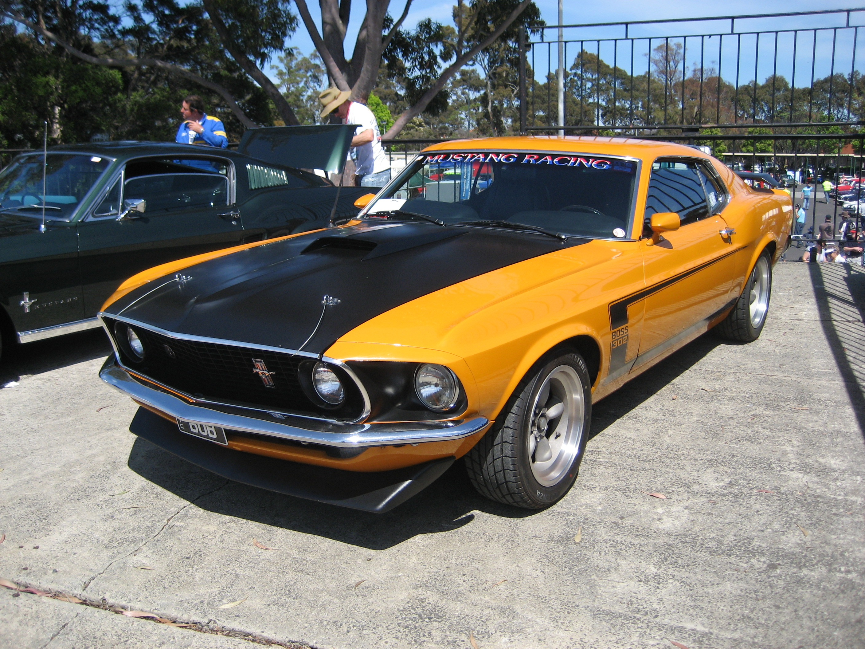 Fileford mustang boss 302 1969 jpg