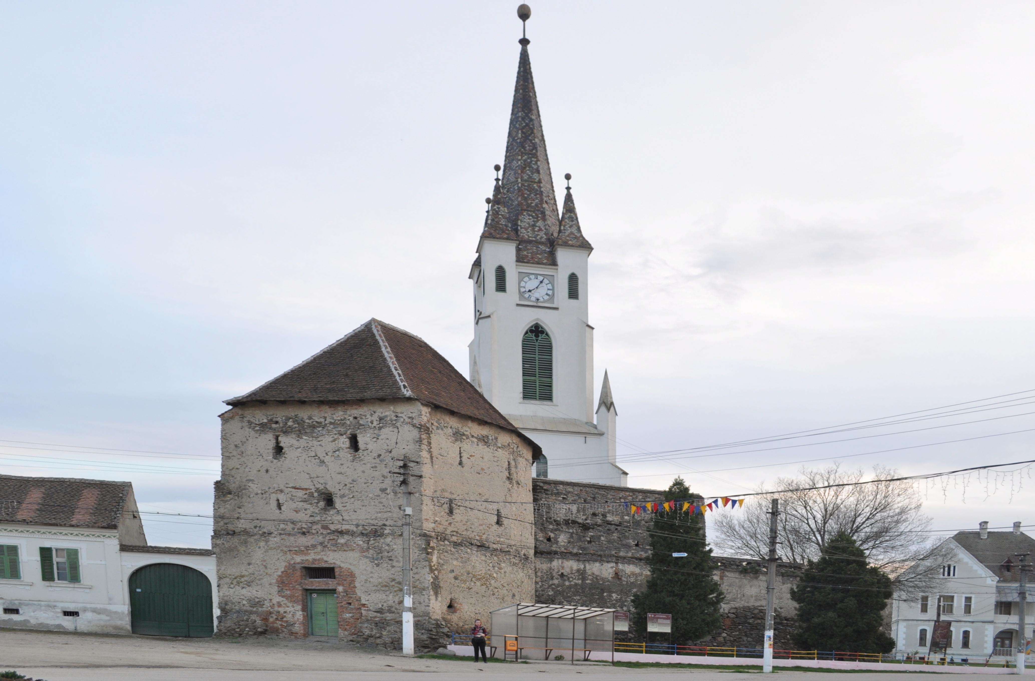 Cetatea Greavilor din Gârbova