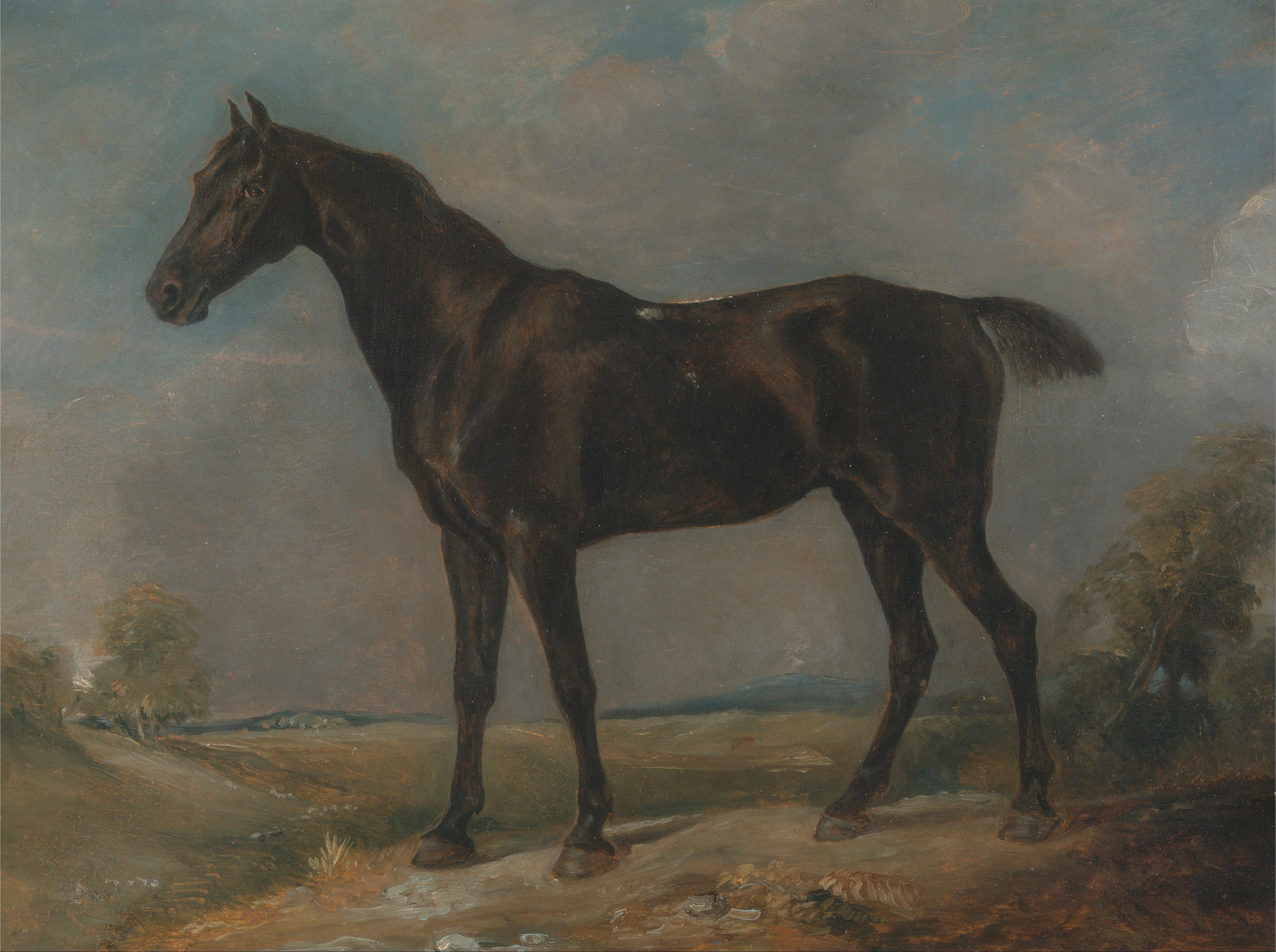 File John Constable Golding Constable S Black Riding Horse Google Art Project Jpg Wikimedia Commons