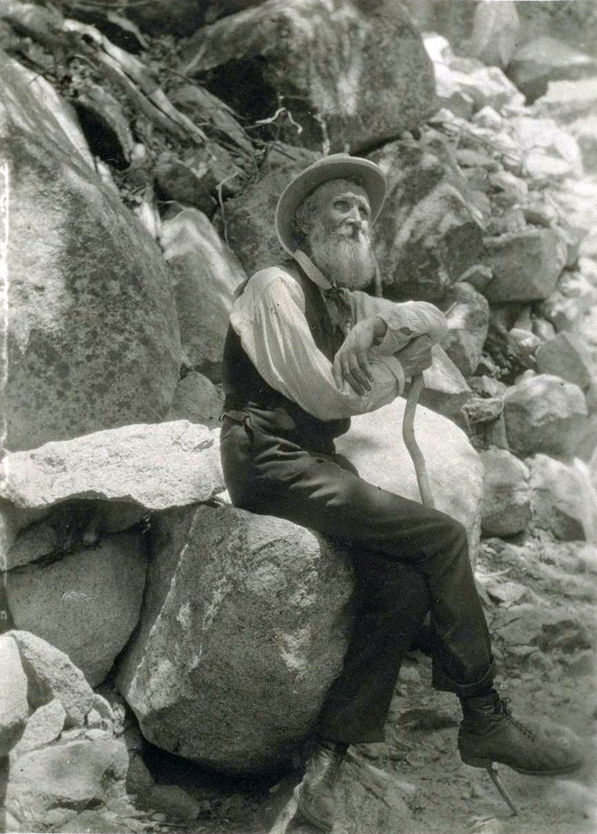 Biography: The Life and Contributions of John Muir