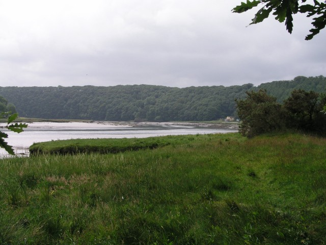 Little Milford on the West Cleddau - geograph.org.uk - 844364