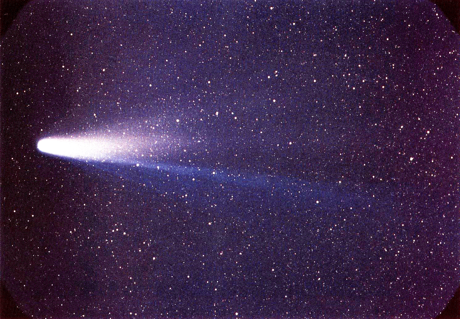 A color image of comet Halley, shown flying to the left aligned flat against the sky