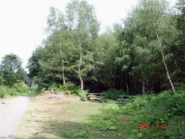 Manley - picnic area in Delamere Forest - geograph.org.uk - 207834